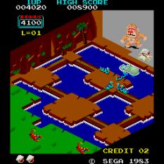 Congo Bongo Arcade 10