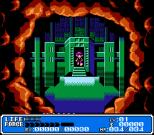 Crystalis NES 02