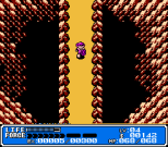 Crystalis NES 07