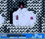Crystalis NES 14