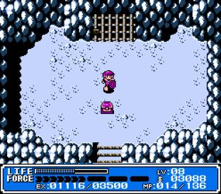 Crystalis NES 20