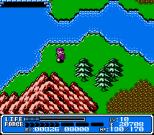 Crystalis NES 39