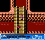 Crystalis NES 41