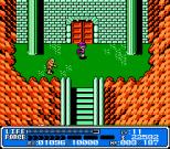 Crystalis NES 49