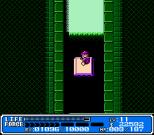 Crystalis NES 50