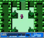 Crystalis NES 51