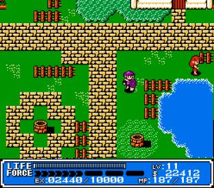 Crystalis NES 56