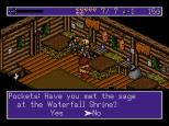 Landstalker Sega Megadrive 24
