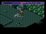 Landstalker Sega Megadrive 30