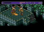 Landstalker Sega Megadrive 35