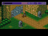 Landstalker Sega Megadrive 48