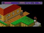 Landstalker Sega Megadrive 74