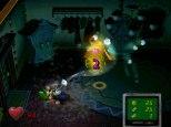 Luigi's Mansion GameCube 26