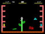 Pssst ZX Spectrum 19