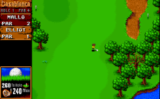 Sensible Golf PC 09
