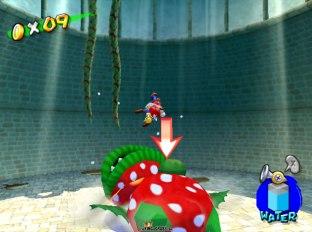 Super Mario Sunshine Gamecube 53