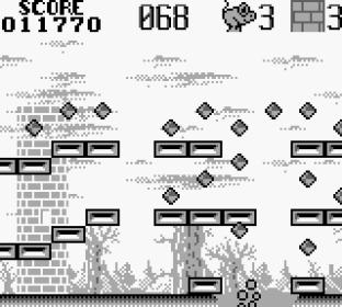 Castelian Game Boy 23