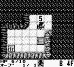 Cave Noire Game Boy 48