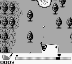 Golf Game Boy 55