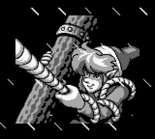 Legend of Zelda Link's Awakening Game Boy 001