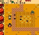 Legend of Zelda - Oracle of Seasons GBC 30
