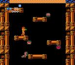 Metroid NES 19