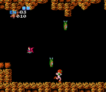 Metroid NES 28
