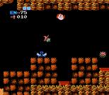 Metroid NES 29