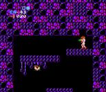 Metroid NES 39