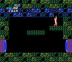 Metroid NES 44