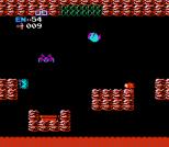 Metroid NES 48
