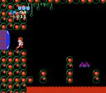 Metroid NES 57