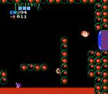 Metroid NES 59