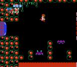 Metroid NES 63