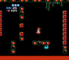 Metroid NES 65