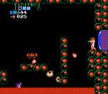 Metroid NES 69