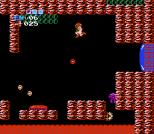 Metroid NES 72