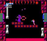 Metroid NES 91