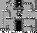 Wario Land - Super Mario Land 3 Game Boy 73