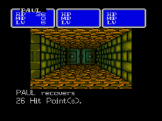 Shining In The Darkness Megadrive 32
