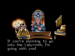 Shining In The Darkness Megadrive 49