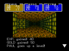 Shining In The Darkness Megadrive 66