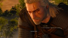 The Witcher 3 - Wild Hunt PC 003