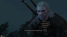 The Witcher 3 - Wild Hunt PC 006