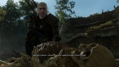 The Witcher 3 - Wild Hunt PC 008