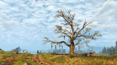 The Witcher 3 - Wild Hunt PC 014