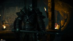 The Witcher 3 - Wild Hunt PC 017