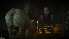 The Witcher 3 - Wild Hunt PC 020