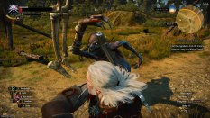The Witcher 3 - Wild Hunt PC 022