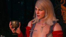 The Witcher 3 - Wild Hunt PC 023